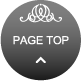 Page top icon